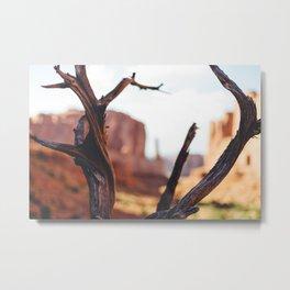 Desert Heat Metal Print