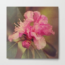 Rhapsody Blooms Metal Print