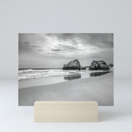 Stone beach Praia da Rocha Mini Art Print