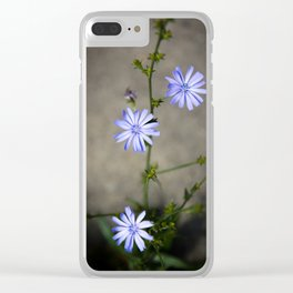 Chicory In The Concrete Jungle Clear iPhone Case