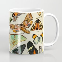 Butterfly Vintage Scientific Illustration French Language Encyclopedia Lithographs Educational Diagr Coffee Mug