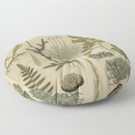 Ferns And Mosses Floor Pillow