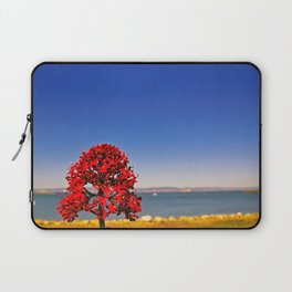 I See Music + Hear Colors | 2010 Laptop Sleeve