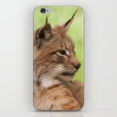 Lynx Lynx iPhone Skin