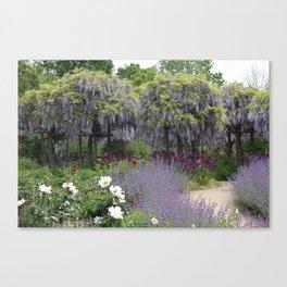 Blue Flowergarden With Wisteria Canvas Print