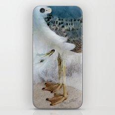 Fantasy Seagull iPhone & iPod Skin