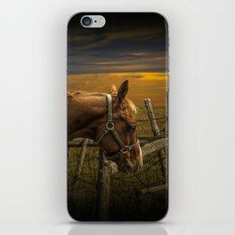 Saddle Horse on the Prairie iPhone Skin