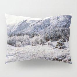 Winter Flatirons 35mm Pillow Sham