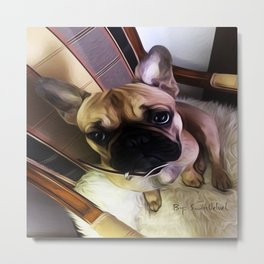 You can always find hope in a dogs eyes. Metal Print