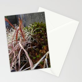 Dry Grass, Moss, and Rock Stationery Cards
