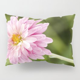 Padre Cerise Belgian Mum Bud and Bloom Pillow Sham