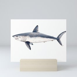 Porbeagle shark (Lamna nasus) Mini Art Print