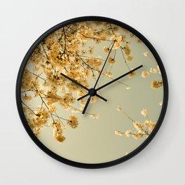 vintage skies Wall Clock