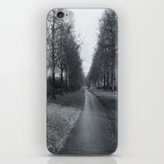 A Winters Day. iPhone Skin