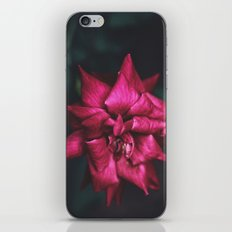 Yin // Yang iPhone & iPod Skin