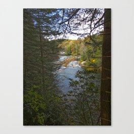 Audra 1 Canvas Print