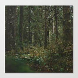 Hoh Rain Forest #2 Canvas Print