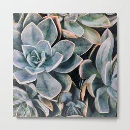 Succulent plants floral pattern Metal Print