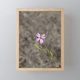 Pink in Idaho Framed Mini Art Print