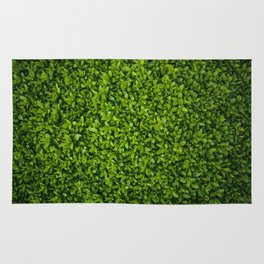 Green Leaves Pattern Rug