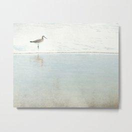 Reflecting Sandpiper Metal Print