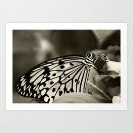 Butterfly ~ La robe du soir ~ evening dress ~ Art Print