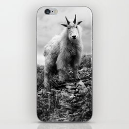 MOUNTAIN GOATS // 1 iPhone Skin