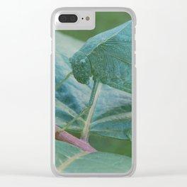 Katydid Clear iPhone Case
