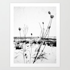 | the desolation flowers | Art Print