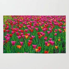 Ocean of Tulips - The Peace Collection Rug