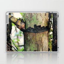 Palm Trunk Laptop & iPad Skin