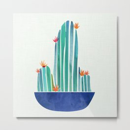 Spring Cactus Blossoms with Indigo Terra Cotta Metal Print