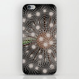 Abstract Dandilion Seeds iPhone Skin