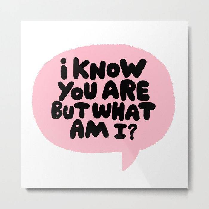i know you are but what am i? Metal Print