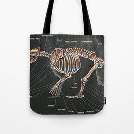 Artctodus Simus Skeletal Study Tote Bag