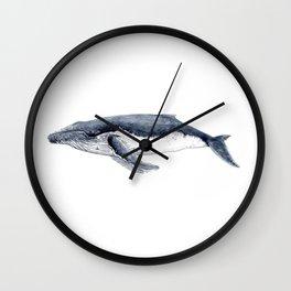 Humpback whale (Megaptera novaeangliae) Wall Clock