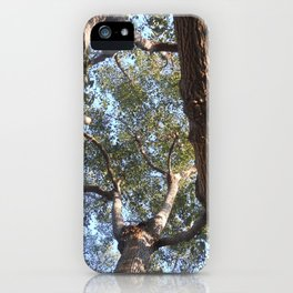 A Shattered Sky iPhone Case