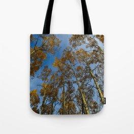 Trembling Aspen Trees in Jasper National Park Tote Bag