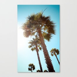 Palm Tree Beach Life Canvas Print