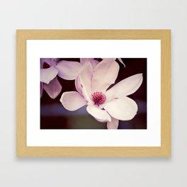 Magnolia in Bloom, 2 Framed Art Print
