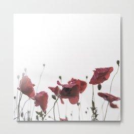 Morning Red Flowers Metal Print