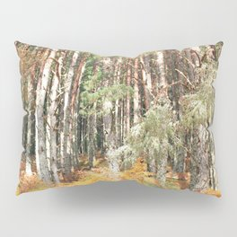 I have a room all to myself; it is nature Pillow Sham