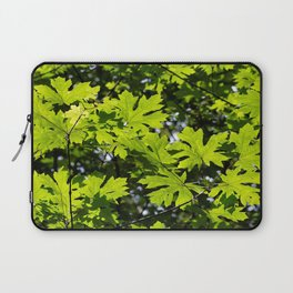 Sun-Dappled Forest in the Spring Laptop Sleeve