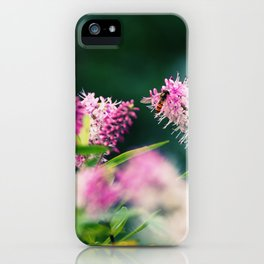 Summer Delight iPhone Case