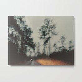 341 | bastrop state park Metal Print