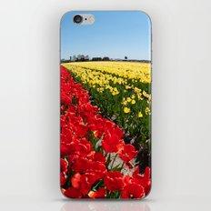 Tulips field iPhone & iPod Skin