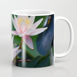 Water Lily neighbours and friends Coffee Mug