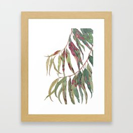 A touch of red - watercolour of eucalyptus branch Framed Art Print