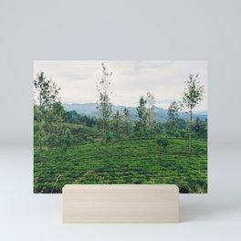 Tea Fields of Sri Lanka, View from the Ella to Kandy Train Mini Art Print
