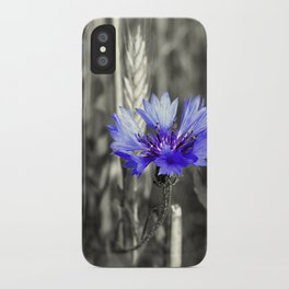 Kornblume iPhone Case